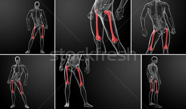 3D illustratie bot lichaam gezondheid Stockfoto © maya2008