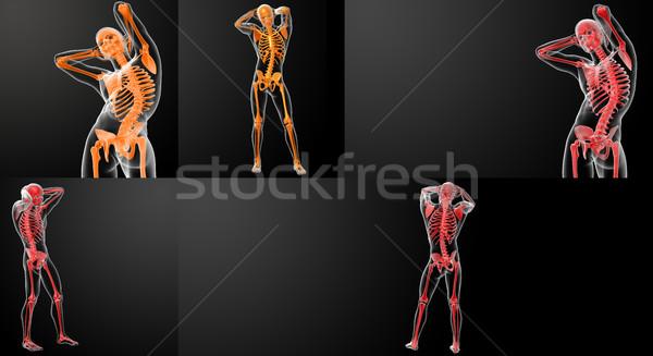 3D renderelt kép csontváz izom bőr digitális Stock fotó © maya2008