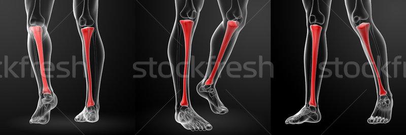 3D illustratie lichaam gezondheid geneeskunde Stockfoto © maya2008