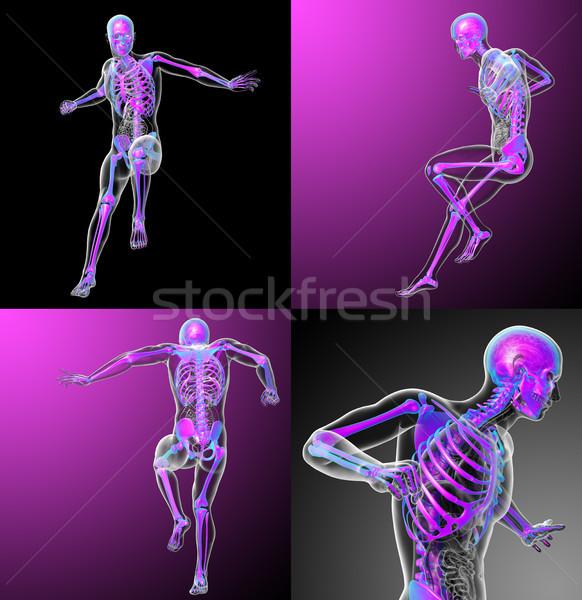 3D medici illustrazione scheletro Foto d'archivio © maya2008
