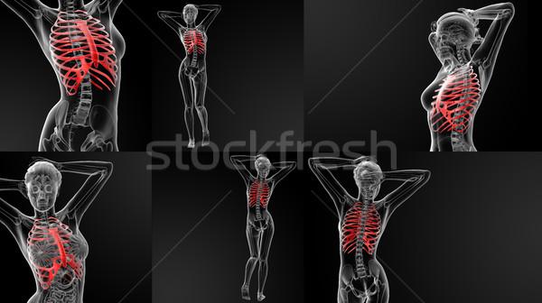 3D illustratie bot medische gezondheid Stockfoto © maya2008