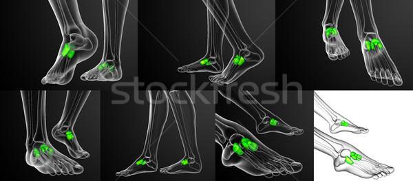3d rendering medical illustration of the midfoot bone Stock photo © maya2008