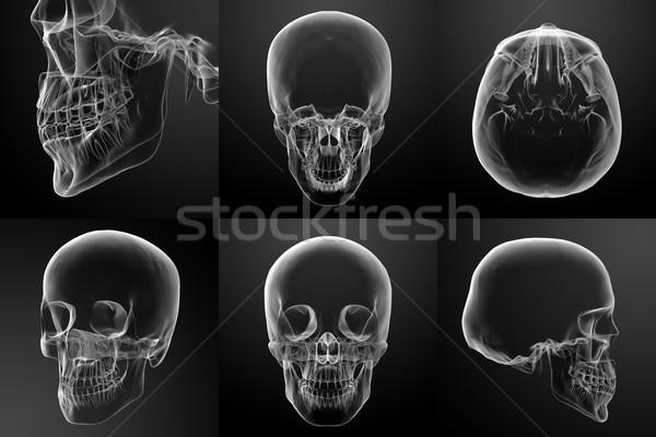 3D レンダリング 実例 頭蓋骨 ボディ 口 ストックフォト © maya2008