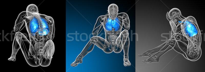 3D レンダリング 医療 実例 人間 呼吸器の ストックフォト © maya2008