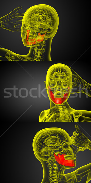 3d rendering illustration of jaw bone Stock photo © maya2008