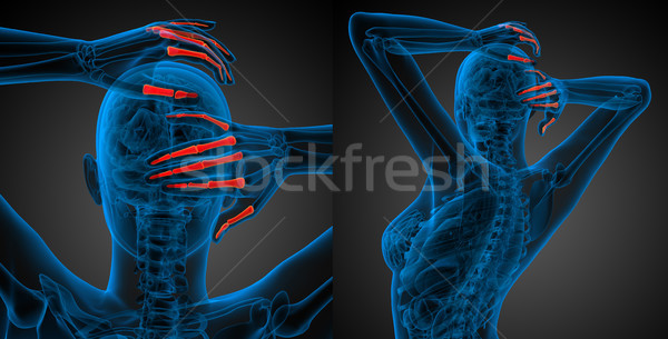 3D ilustração humanismo mão Foto stock © maya2008