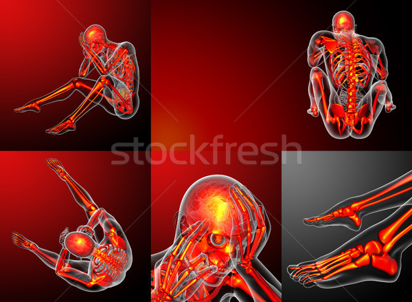 3d rendering medical illustration of the human skeletonl Stock photo © maya2008