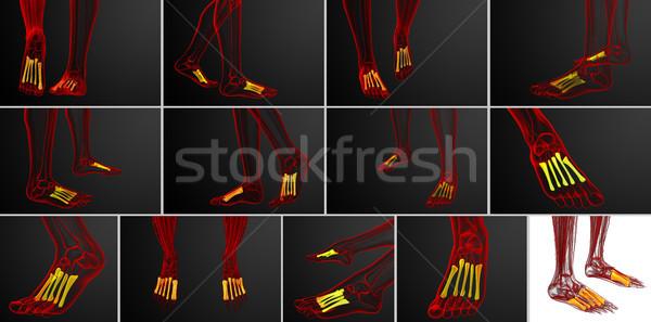 3D médico ilustração ossos Foto stock © maya2008