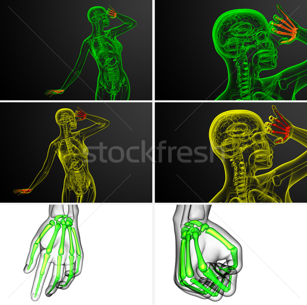 3D レンダリング 実例 スケルトン 手 ストックフォト © maya2008