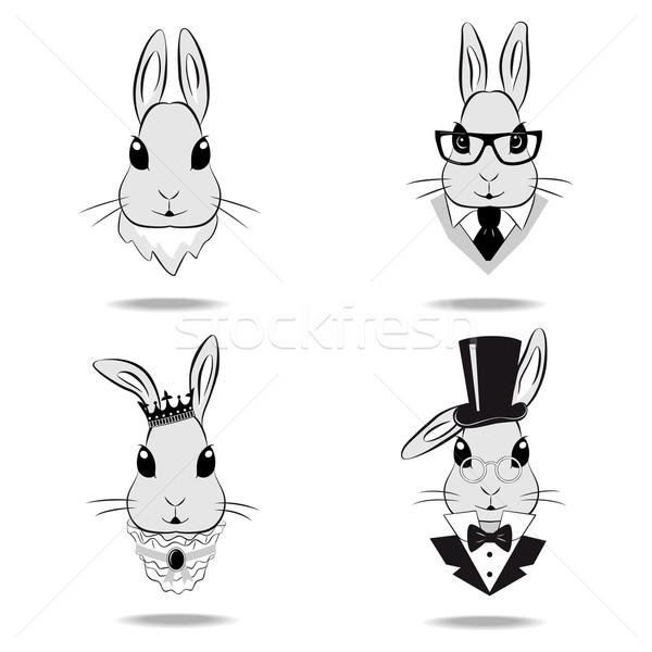 Ingesteld hoofd konijn cartoon kroon Stockfoto © Mayamy