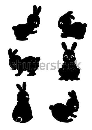 Konijn Maakt een reservekopie silhouetten vergadering springen Stockfoto © Mayamy