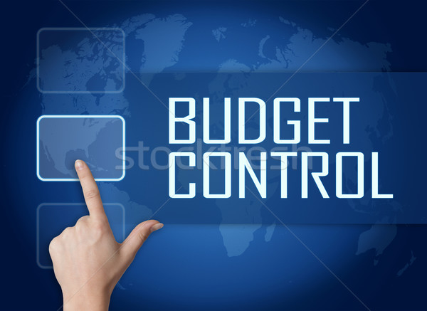 budget control Our termite control will ensure virtually 100% success on the elimination & protection of your property from termites.