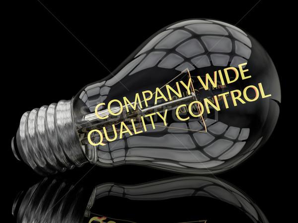 Companhia grande controle de qualidade lâmpada preto texto Foto stock © Mazirama