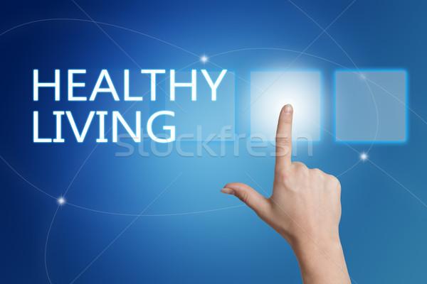 Здоровый образ жизни стороны кнопки интерфейс синий Сток-фото © Mazirama
