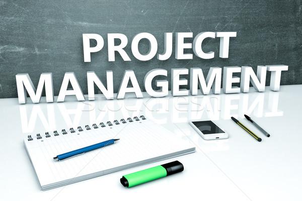 Project Management text concept Stock photo © Mazirama
