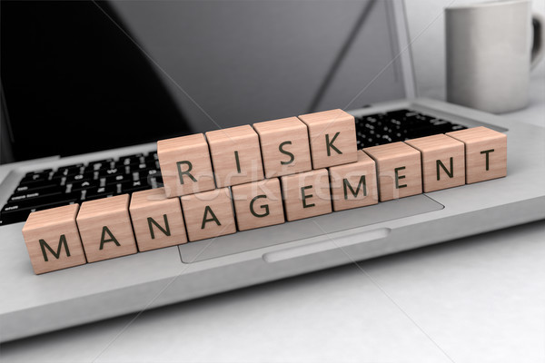 Risk Management text concept Stock photo © Mazirama