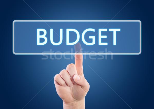 Budget hand knop interface Blauw Stockfoto © Mazirama