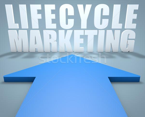 Жизненный цикл маркетинга 3d визуализации синий стрелка указывая Сток-фото © Mazirama