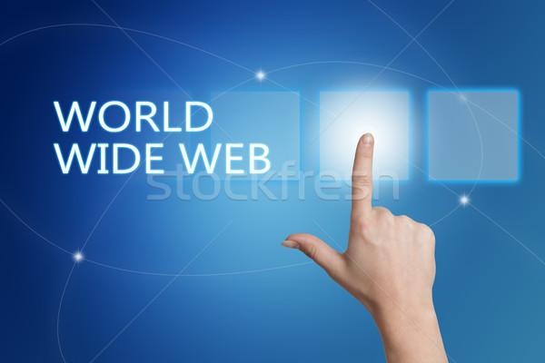 World wide web hand knop interface Blauw Stockfoto © Mazirama