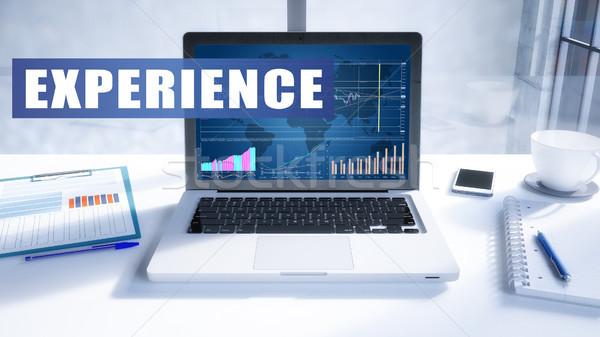 Erfahrung Text modernen Laptop Bildschirm Büro Stock foto © Mazirama