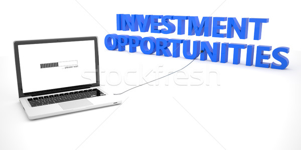Investment Opportunities Stock photo © Mazirama
