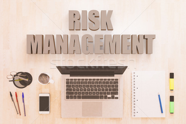 Risk Management text concept Stock photo © Mazirama