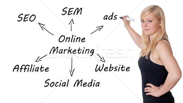 Online pazarlama pazarlama işkadını yazmak şema Stok fotoğraf © Mazirama