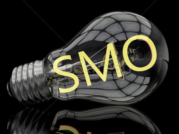 Médias sociaux optimisation ampoule noir texte rendu 3d Photo stock © Mazirama