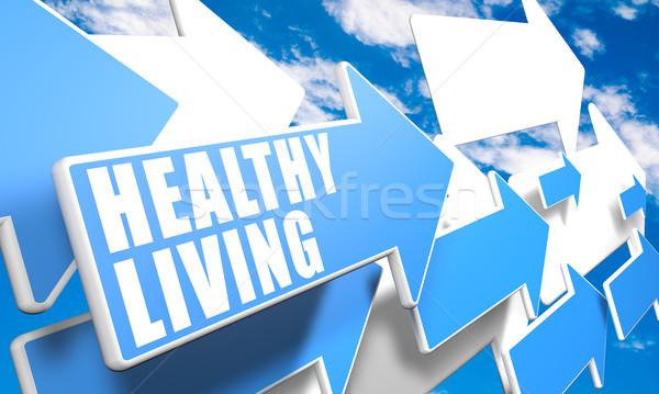 Здоровый образ жизни 3d визуализации синий белый Стрелки Flying Сток-фото © Mazirama