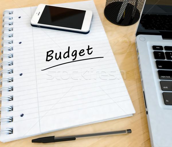 бюджет текста ноутбук столе 3d визуализации Сток-фото © Mazirama