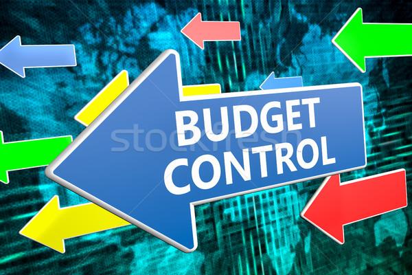 Budget controle tekst Blauw pijl vliegen Stockfoto © Mazirama