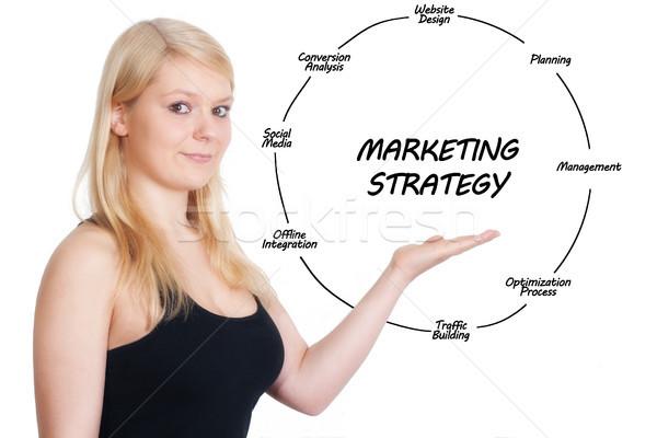 Estratégia de marketing mulher de negócios companhia Foto stock © Mazirama