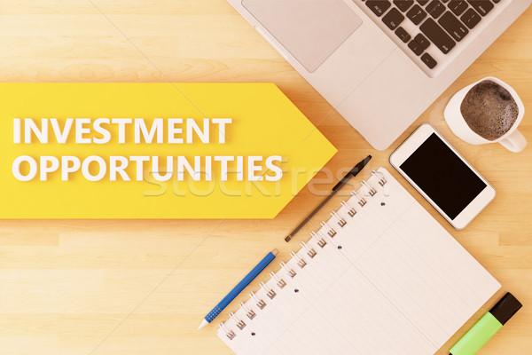 Beruházás lehetőségek lineáris szöveg nyíl notebook Stock fotó © Mazirama