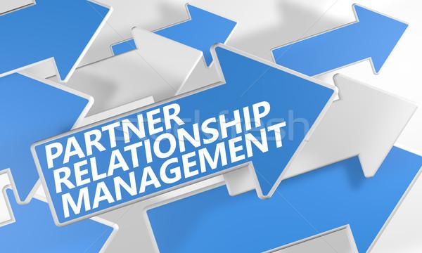 Socio relación gestión 3d azul blanco Foto stock © Mazirama