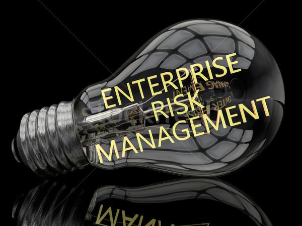 Przedsiębiorstwo zarządzanie ryzykiem żarówka czarny tekst 3d Zdjęcia stock © Mazirama
