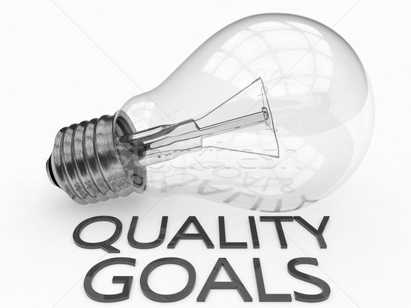 Quality Goals Stock photo © Mazirama