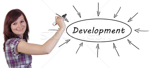 Stock foto: Entwicklung · jungen · Geschäftsfrau · Zeichnung · Informationen