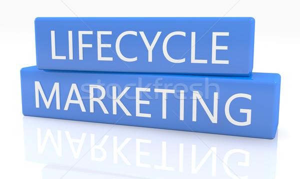Жизненный цикл маркетинга 3d визуализации синий окна текста Сток-фото © Mazirama