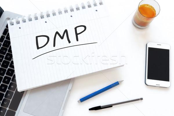 Foto stock: Dados · gestão · dívida · plano