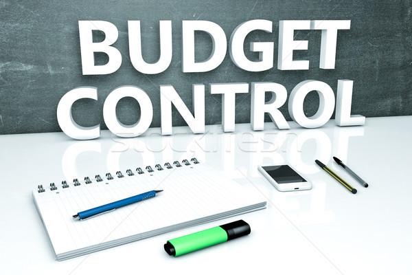 Budget Control text concept Stock photo © Mazirama