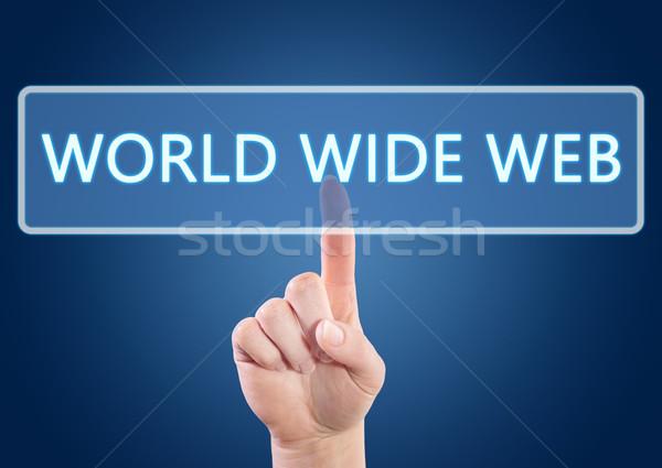 World wide web mão botão interface azul Foto stock © Mazirama