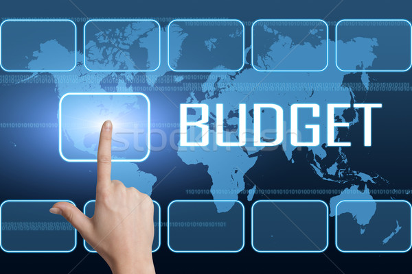 Budget interface wereldkaart Blauw business geld Stockfoto © Mazirama
