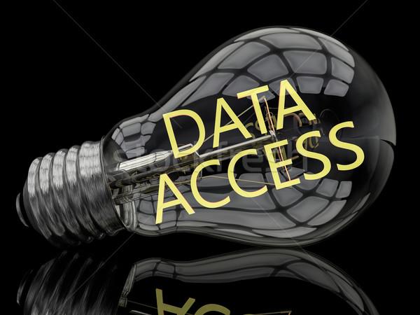 Adat hozzáférés villanykörte fekete szöveg 3d render Stock fotó © Mazirama