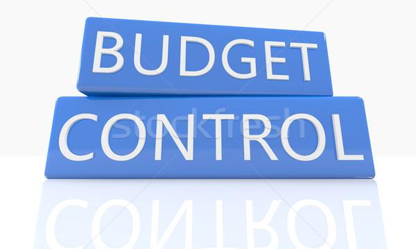 Költségvetés irányítás 3d render kék doboz szöveg Stock fotó © Mazirama