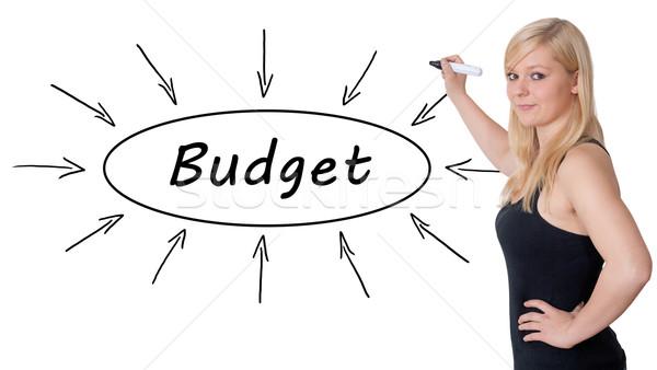 Költségvetés fiatal üzletasszony rajz információ tábla Stock fotó © Mazirama