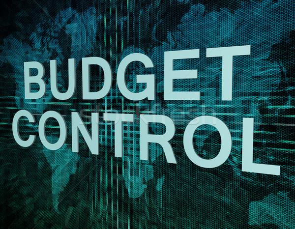 Bütçe kontrol metin yeşil dijital dünya haritası Stok fotoğraf © Mazirama