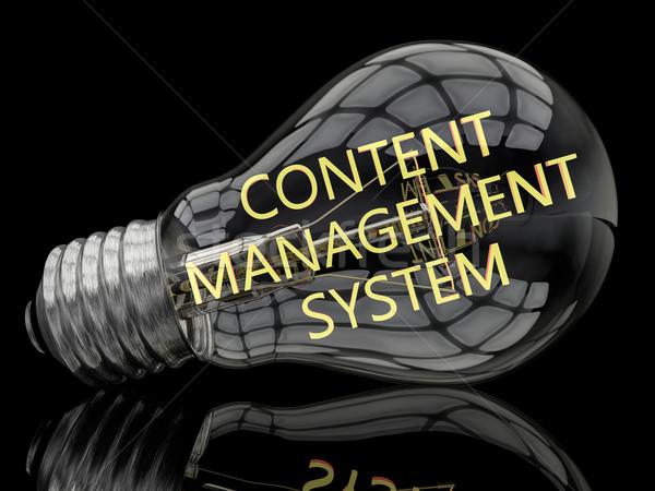 Contenu gestion ampoule noir texte rendu 3d Photo stock © Mazirama