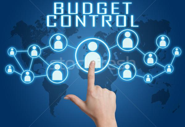 бюджет контроль стороны социальной иконки Сток-фото © Mazirama