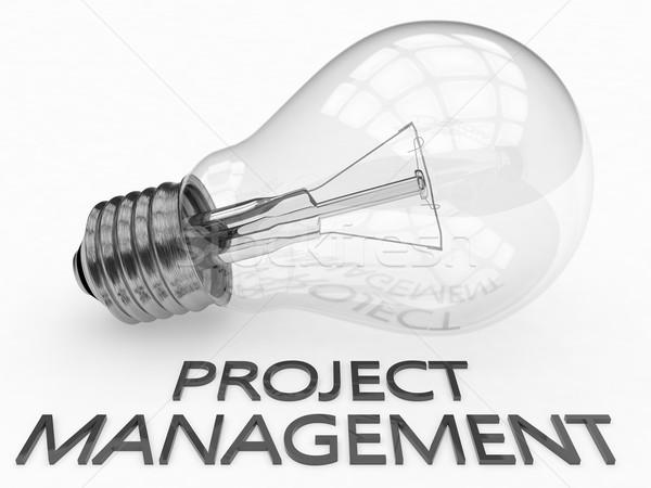 Projektu zarządzania żarówka biały tekst 3d Zdjęcia stock © Mazirama