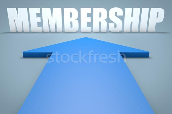 Afiliación 3d azul flecha senalando equipo Foto stock © Mazirama